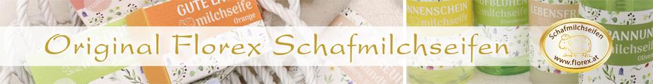 Banner_schmal_Februar-2019